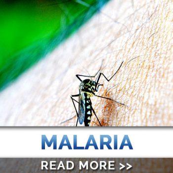 Donation-Malaria
